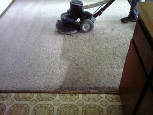 carpet cleaner saratoga ny 12866 44