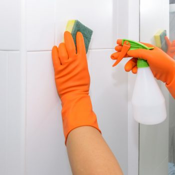 Bathroom Cleaning - J and R's Carpet Cleaning