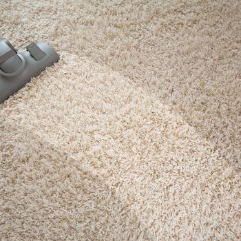 Vacuum Belt - J & R's Carpet Cleaning