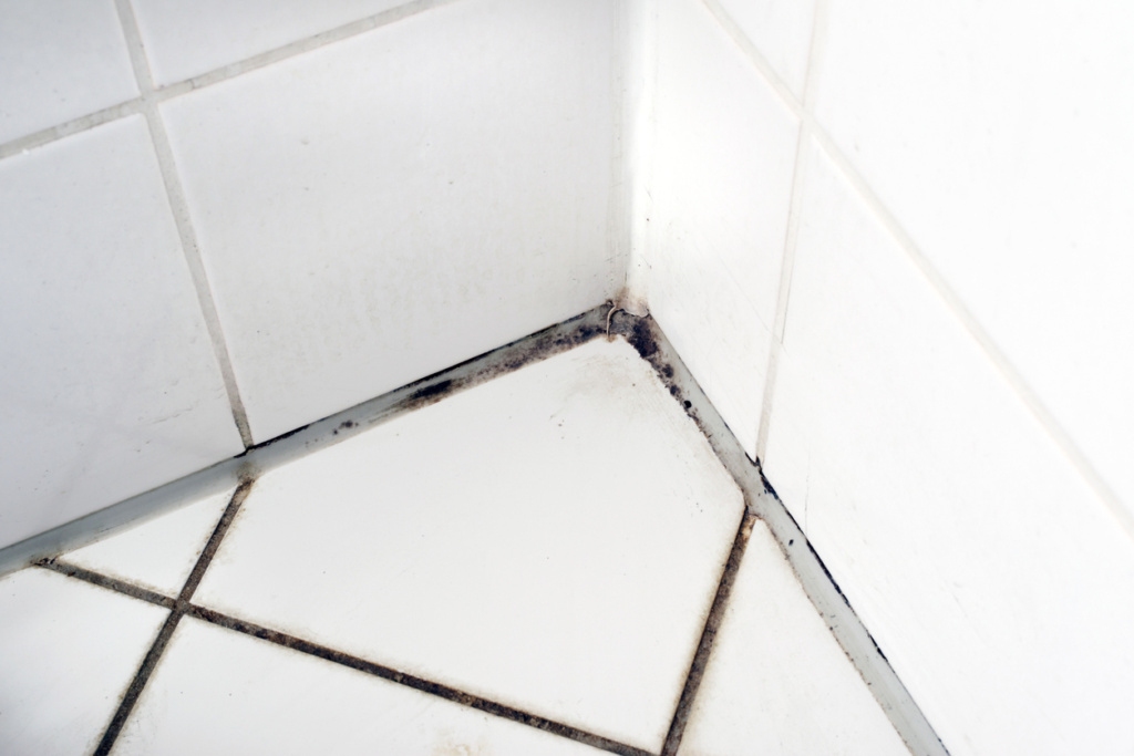 Grout Cleaning Tips - J and R's Carpet Cleaning, Saratoga, NY