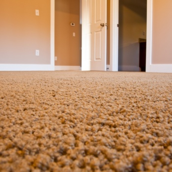 carpet cleaning saratoga ny