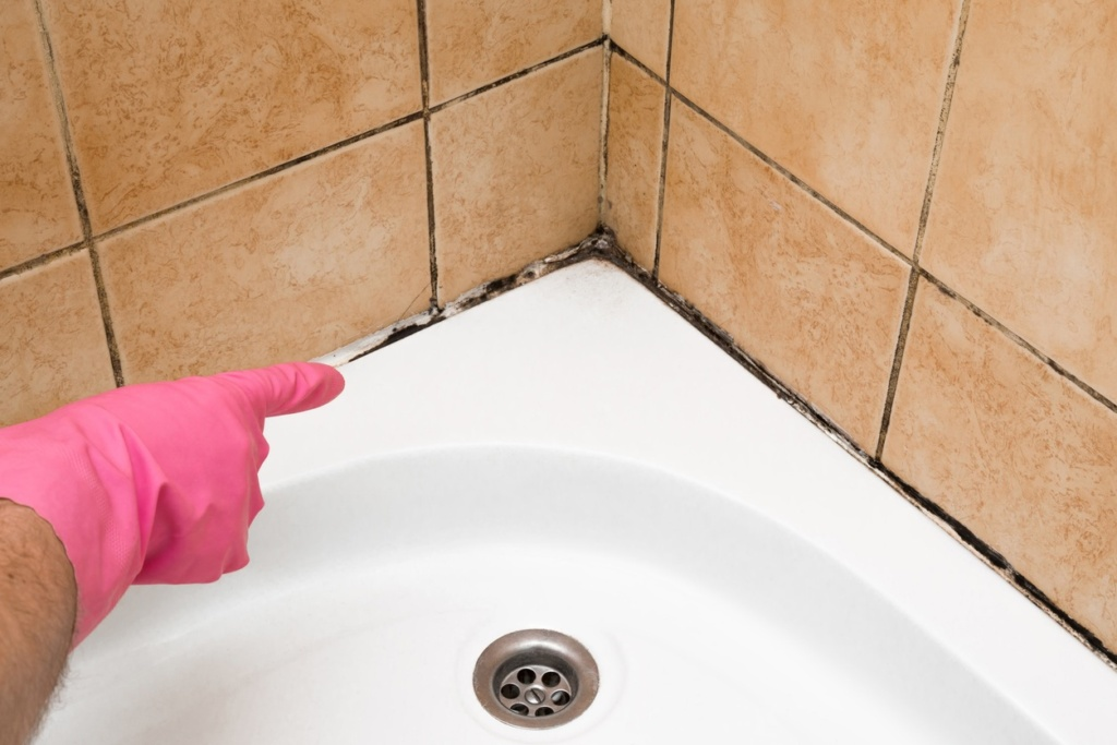 Tile and Grout Cleaning Saratoga NY